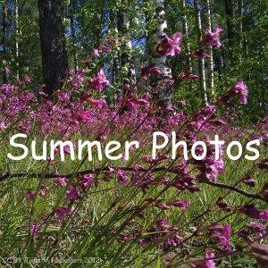 2012-6-4 Summer Photos, ver 1
